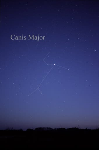 how to find Canis Major