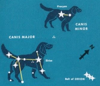 How to fin Canis Minor