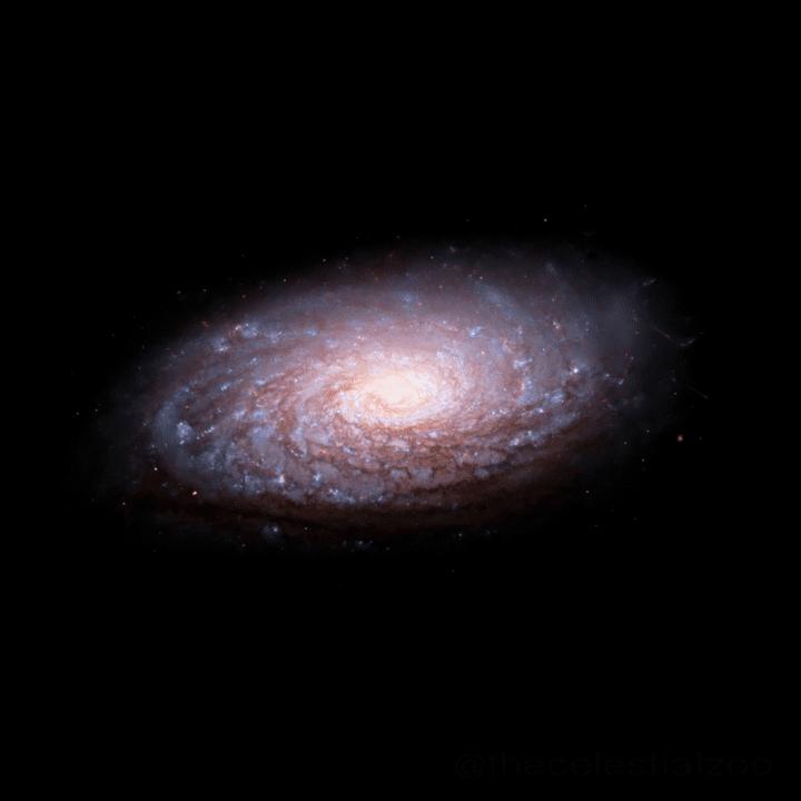 Sunflower_galaxy